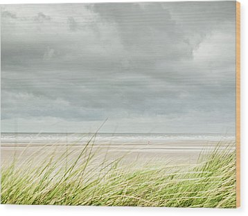 Marram Grass On Beach By Sea Wood Print by Dune Prints by Peter Holloway