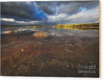 Marsh Landscape Of Cabo Rojo Wood Print by George Oze