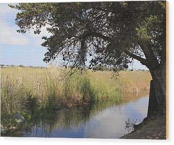 Wood Print featuring the photograph Marsh Reflections by Jan Cipolla