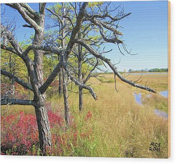 Wood Print featuring the digital art Marsh Trees by Richard Stevens