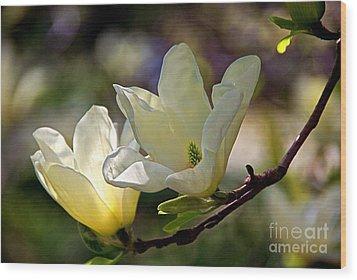 Marvelous Magnolia Wood Print by Byron Varvarigos