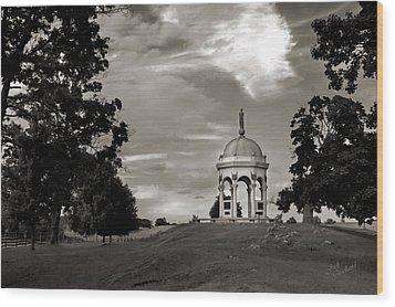 Maryland Monument - Antietam Wood Print by Judi Quelland