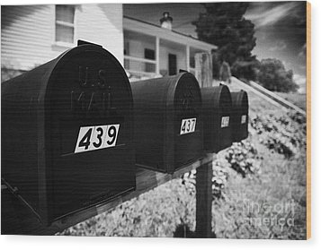 matt black american private mailboxes in front of houses Lynchburg tennessee usa Wood Print by Joe Fox