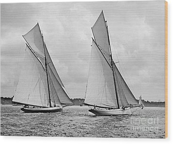 Mayflower And Galatea Start America's Cup 1886 Wood Print