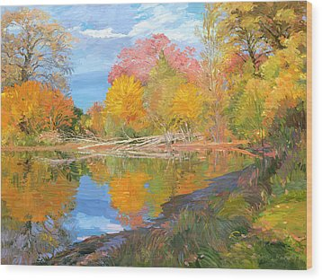 Mayslake At Fall Wood Print by Judith Barath