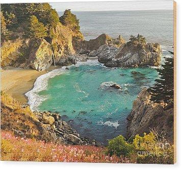 Mc Way Falls Cove Wood Print