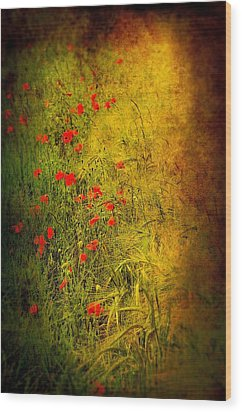 Meadow Wood Print by Svetlana Sewell
