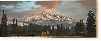 Wood Print featuring the photograph Meadow Views by Randy Wood