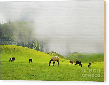 Meadows Of Heaven Wood Print by Syed Aqueel