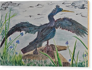 Anhinga-drying Out Wood Print by Mickey Krause