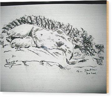 Medusa In Recline Wood Print by Brian Sereda