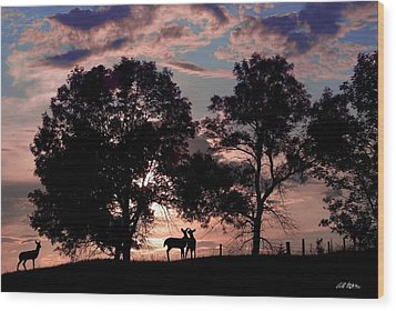 Meeting In The Sunset Wood Print by Bill Stephens