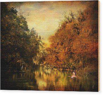 Meeting Of The Seasons Wood Print by Jai Johnson