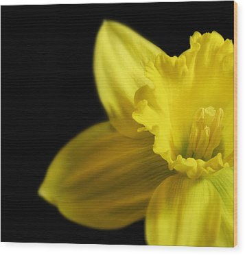 Mellow Yellow Wood Print by Peter Chilelli