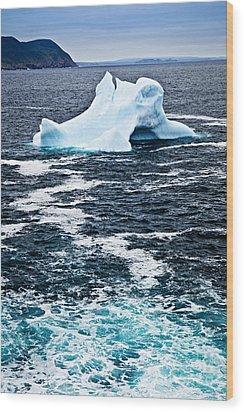 Melting Iceberg Wood Print by Elena Elisseeva
