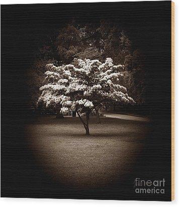 Memoir 1 Wood Print by Luke Moore