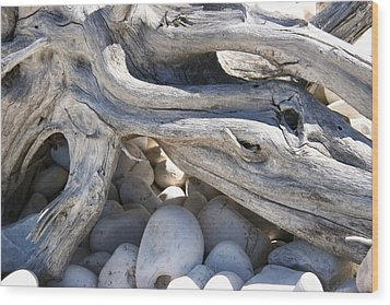 Memory Of Whales Wood Print by Carl Bell