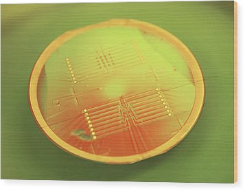 Mems Production, Gold Metal Circuitry Wood Print by Colin Cuthbert