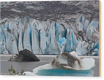 Mendenhall Glacier Juneau Alaska 1698 Wood Print
