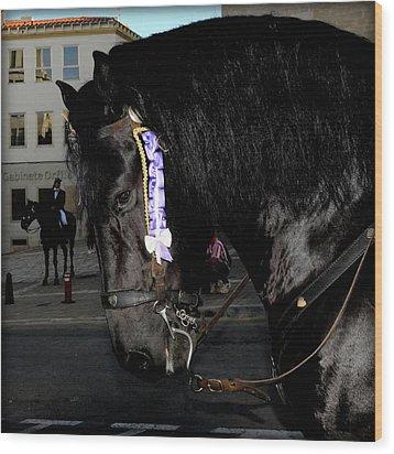Wood Print featuring the photograph Menorca Horse 2 by Pedro Cardona