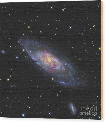 Messier 106, A Spiral Galaxy With An Wood Print by R Jay GaBany