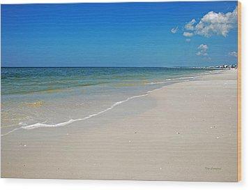 Mexico Beach Wood Print