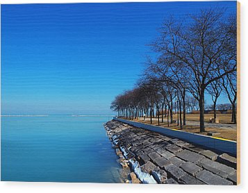 Michigan Lakeshore In Chicago Wood Print by Paul Ge