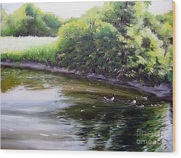Mid Summer Day Canada Geese Wood Print by Ronald Tseng