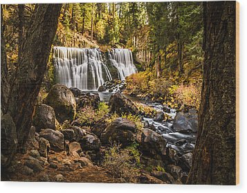 Wood Print featuring the photograph Middle Falls Mccloud River -2 by Randy Wood