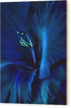 Midnight Blue Gladiola Flower Wood Print by Jennie Marie Schell