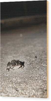 Midnight Frog Wood Print