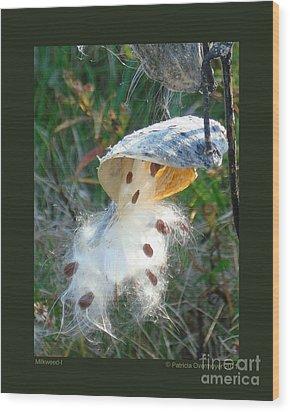 Milkweed-i Wood Print