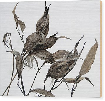 Wood Print featuring the mixed media Milkweed In Winter by Bruce Ritchie