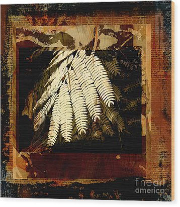 Mimosa Leaf Collage Wood Print