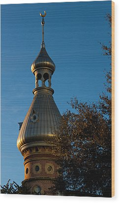 Wood Print featuring the photograph Minaret And Trees by Ed Gleichman