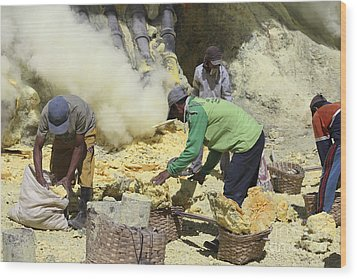 Miners Collecting Lumps Of Sulphur Wood Print by Richard Roscoe
