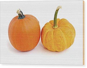 Mini Pumpkins Wood Print by Elena Elisseeva