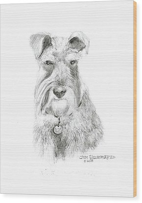 Miniature Schnauzer Wood Print by Jim Hubbard