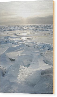 Minnesota, United States Of America Ice Wood Print by Susan Dykstra