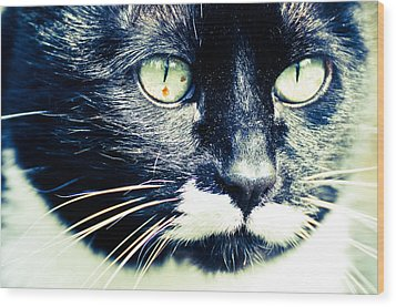 Wood Print featuring the photograph Minnie by Ronda Broatch