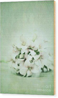 Mint Green Wood Print by Priska Wettstein