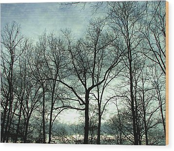 Wood Print featuring the photograph Mirage In The Clouds by Pamela Hyde Wilson