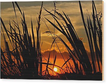 Wood Print featuring the photograph Mississippi Sunset At The Ross Barnett Reservoir 2 by Jim Albritton