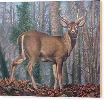 Missouri Whitetail Deer Wood Print