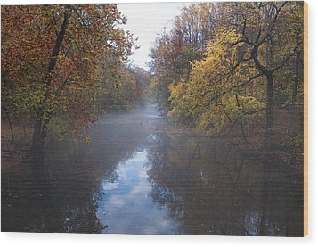 Mist Along The Wissahickon Wood Print by Bill Cannon