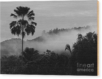 Mist Od Dawn.  Wood Print