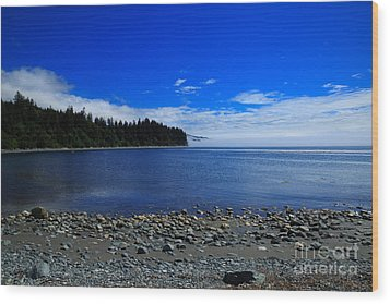 Mist On The Sea At Jordan River Wood Print by Louise Heusinkveld