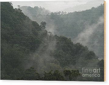 Wood Print featuring the photograph Misty Cloud Forest Matagalpa Nicaragua by John  Mitchell