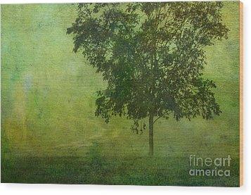Misty Country Lane Wood Print by Judi Bagwell