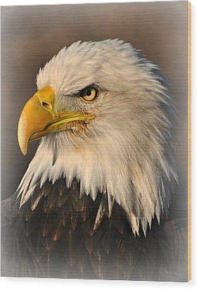 Misty Eagle Wood Print by Marty Koch